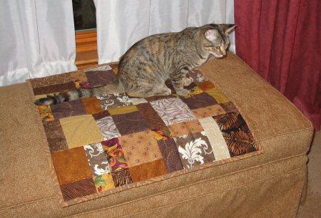 Meerkat on her quilt