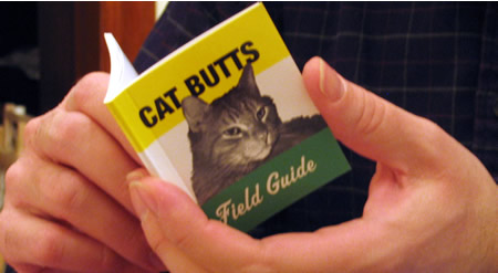 Daddy reads the field guide to cat butts