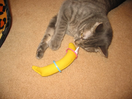 I got my own banana!  Notice the milk ring decoration!