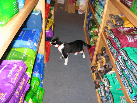 Lots of great things to sniff!