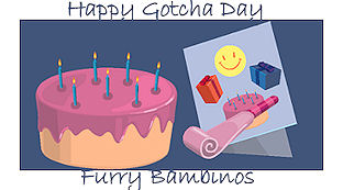 Happy Gotcha Furry Bambinos